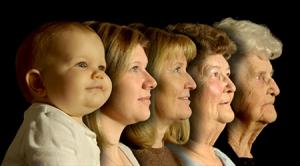 five-generations4
