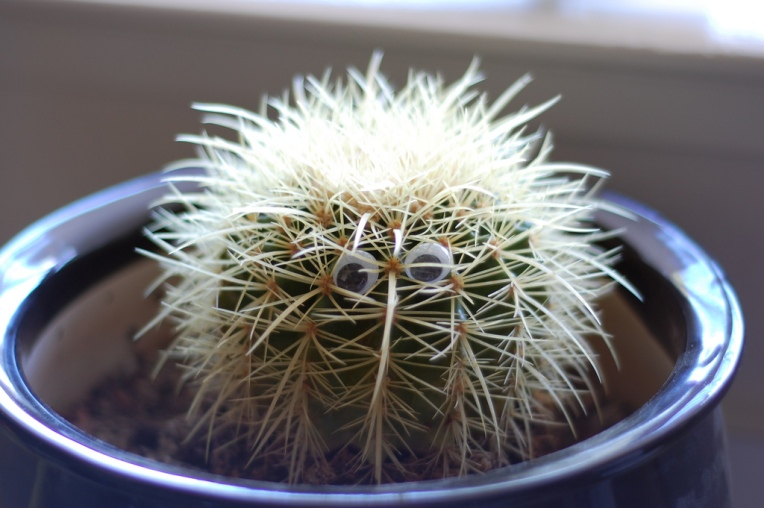 Cactus_with_googly_eyes