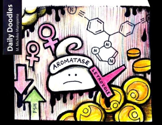Doodle of aromatase inhibitors Courtesy of: Michiko Maruyama, michiko.maruyama@gmail.com, www.artoflearning.ca