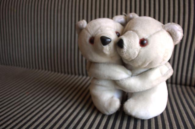 two white teddy bears hugging