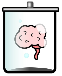 drawing of a human brain in a jar