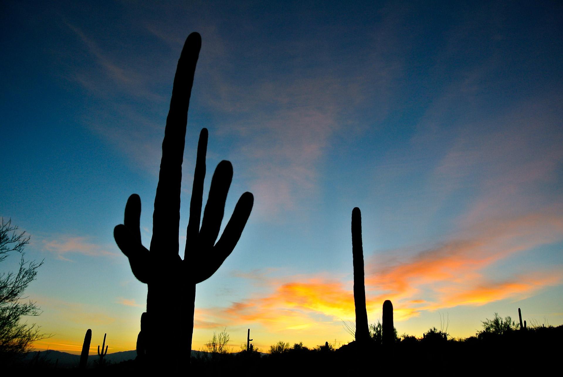 arizona-sunrise-1353151490dop