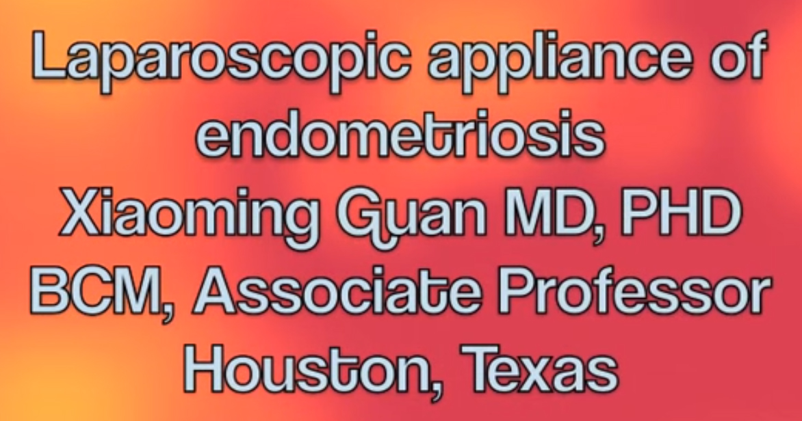 """Text that reads """"Laparoscopic appliance of endometriosis"""""""