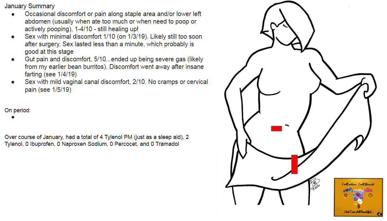 Summary of January 2019 pain and symptoms