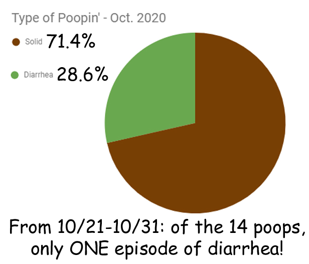 pie chart showing 72% of poop was solid and 28% of poop was diarrhea