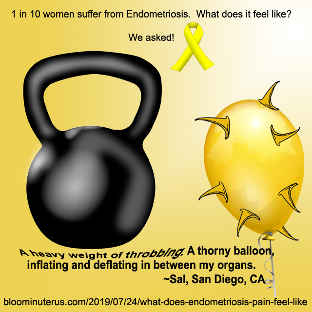 A heavy weight of low back throbbing. A thorny balloon, inflating and deflating in between my organs.  Sal, San Diego